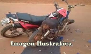 GUANACO BOLEADO, LUYABA : CHOCAN 2 MOTOS Y UNO DE LOS CONDUCTORES, CON LESIONES GRAVES.