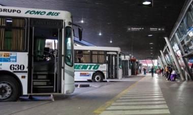 CÓRDOBA : EL TRANSPORTE INTERURBANO, GRATIS PARA LAS PASO, MIRÁ LOS REQUISITOS.