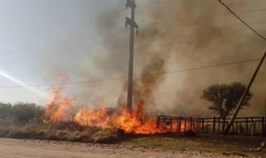 UN INCENDIO FORESTAL ARRASÓ CERCA DE 400 HECTÁREAS EN PAPAGAYOS, SAN LUIS.